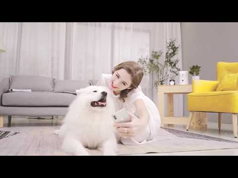 Skymee Petalk AI Dog Camera: The Best Christmas Gift for Dogs