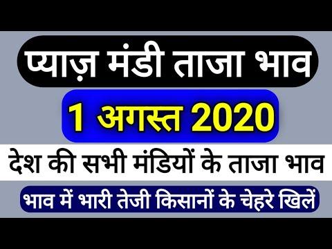 1-अगस्त-2020-प्याज-मंडी-ताजा-भाव,-प्याज-भाव-में-भारी-तेजी,onion-bhav-today-payaj-bhav,mandi-bhav