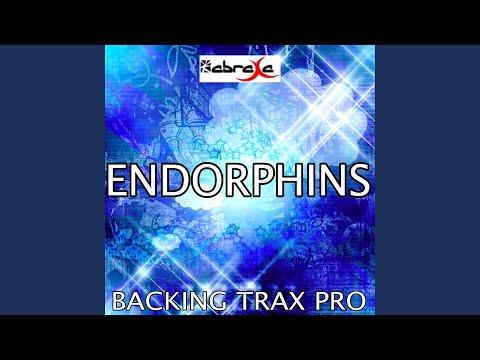 Endorphins (Karaoke Version) (Originally Performed by Sub Focus) mp3