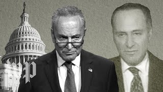 opinion-schumer-demands-impeachment-witnesses-haunt-democrats