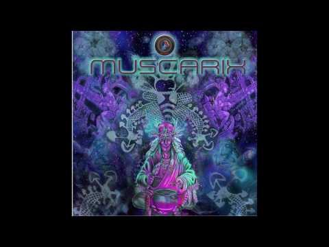 Malkaviam & Digitalist - Drop Acid