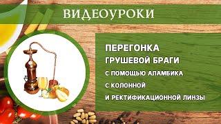 Приготовление грушевой браги с помощью аламбика с колонной и ректификационной линзы. Видеоурок.