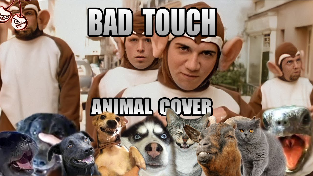 Bloodhound Gang -The Bad Touch (Animal Cover)