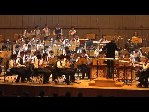 beautiful---nanyang-polytechnic-chinese-orchestra