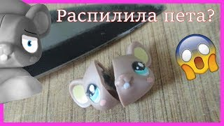 LPS:эксперименты/Сломала пета?! :( /Candy cat official/