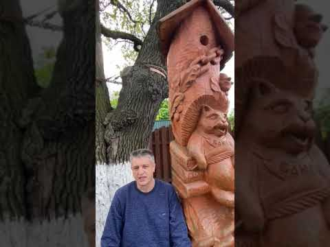 Олег Костерин (У Лукоморья дуб зеленый) - YouTube