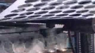 Производство одноразовой посуды на ОАО