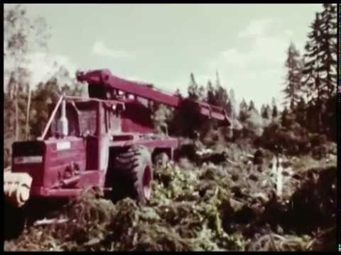 Forestry in Sweden 1969