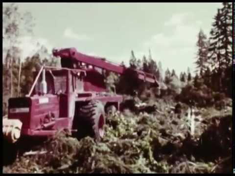 Forestry in Sweden 1969