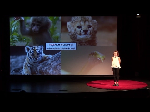 What If Wild Animals Could Be Pets? | Ivy Yourkiewicz | TEDxYouth@Columbus