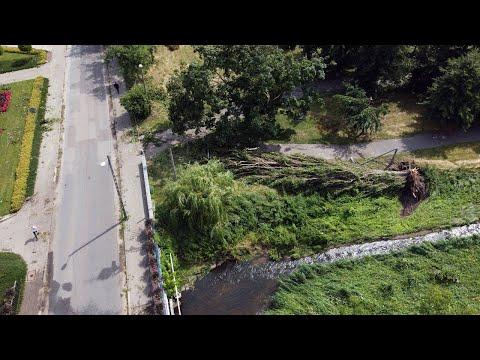 Drzewa powalone przez burzę na pabianickich bulwarach