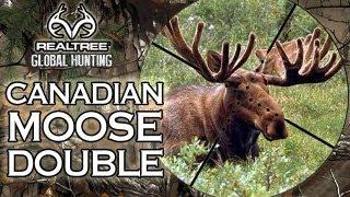 EPIC Canadian Moose Hunt - Two Giant Bulls!