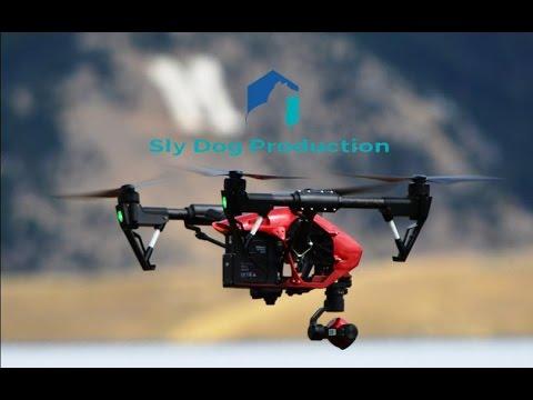 Sly Dog Production
