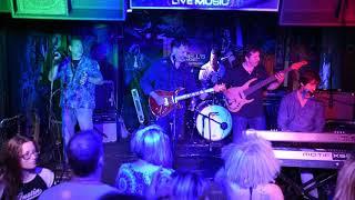 Dennis Delgaudio playing through Rocknroll Amps Blues Senior 4-6v6