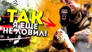 Лучшая рыбалка на реке Алей Лещ на фидер Ночевка полевая кухня Часть 2