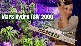 UNBOXING MARS HYDRO TSW 2000 | Indoor WEED Grow