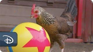 Скачать Pixar Ball Animals At Disney S Animal Kingdom