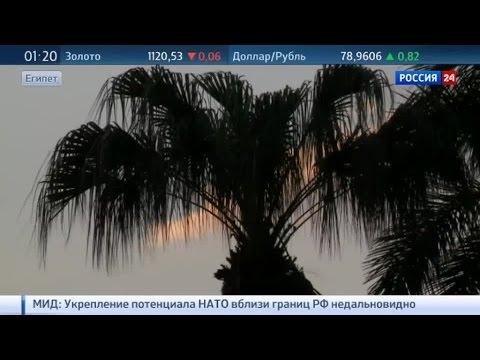 Российские туристы смогут вернуться на курорты Египта