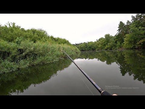 Рыбалка на спиннинг в пасмурную погоду на красивой речке. Идеальная погода для ловли хищника.