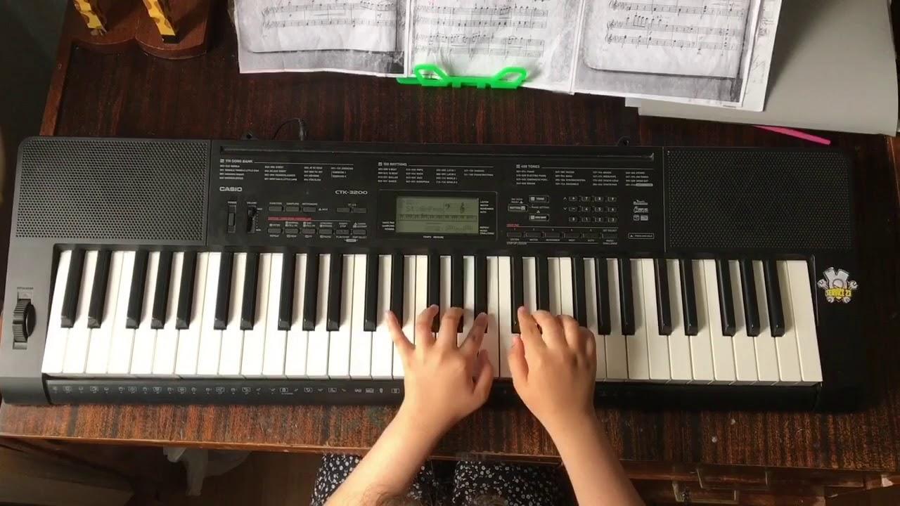 синтезатор Casio Ctk 800