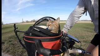 Cats bike adventure into Hungary
