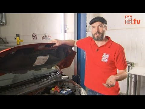 AUTO BILD Ratgeber: Batterie