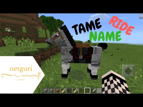 TAME, RIDE, AND NAME HORSES IN MINECRAFT PE 0.15.0!!!