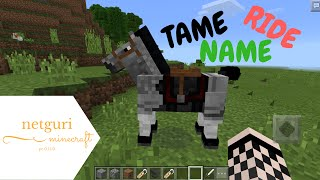 Download lagu TAME RIDE AND NAME HORSES IN MINECRAFT PE 0 15 0 MP3