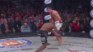Bellator MMA Highlights: The Featherweight + The Light Heavyweight Tournaments