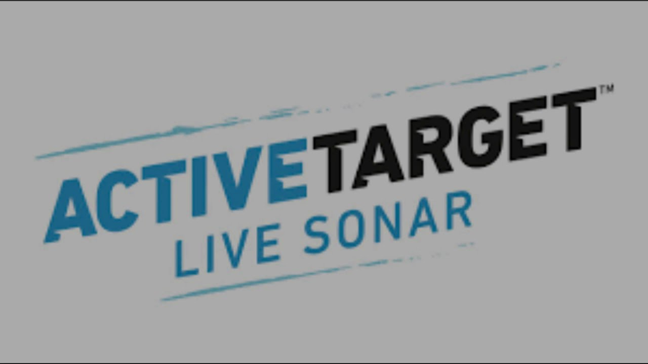 Lowrance new ActiveTarget Live Sonar screen capture and videos