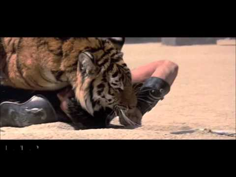 Ke$ha - Warrior ( Music Video )