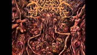 Watch Visceral Disgorge Necrocoprophagia video