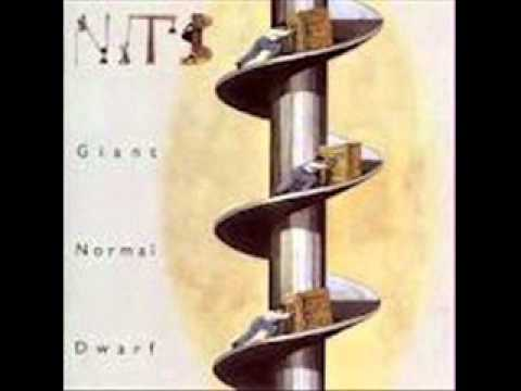 The Nits   Sorrow