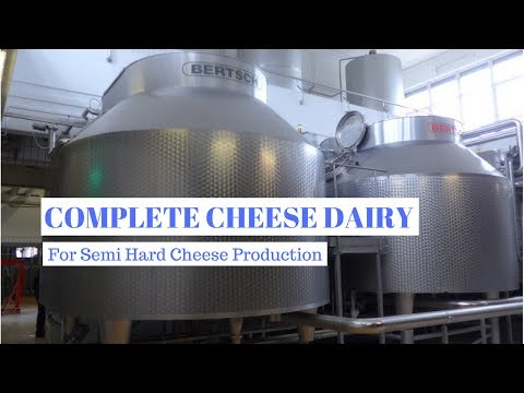 Complete Dairy for Semi Hard Cheese Production