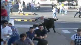 bull vs man man wins part2 light funny bika és ember 公牛與人