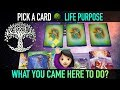"""Pick a Card reading : LIFE PURPOSE """"What you came here to do?"""""""