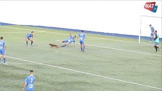 بالفيديو.. 'كلب' يقتحم مباراة كرة قدم فى المغرب
