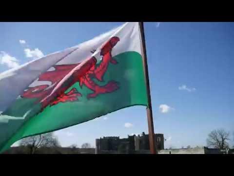 Pembrokeshire Drovers