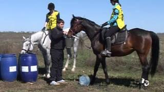 Международные соревнования по дистанционным пробегам (конный марафон