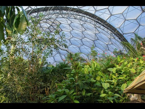 The Eden Project Rainforest and Mediterranean Biomes in Daylight and at Night
