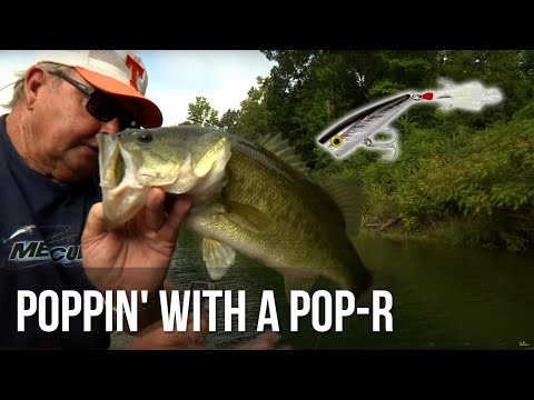 Poppin' With A Pop-R