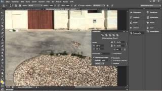 Gekonnt mit dem Stempel umgehen - Adobe Photoshop CS6 für digitale Fotografie