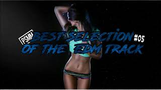 PSMM - Best Selection Of The EDM Track