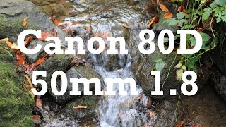 How to install Technicolor Cinestyle on Canon 80D | with