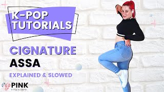 cignature - ASSA PKA Tutorial [Mirrored and Full Explanation]