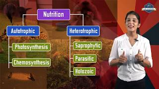 Life Processes 02: Mode of Nutrition (CBSE Class X Biology) Hindi+English