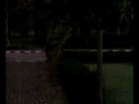 Garden in front of the Rector building of the National University of Laos.mp4