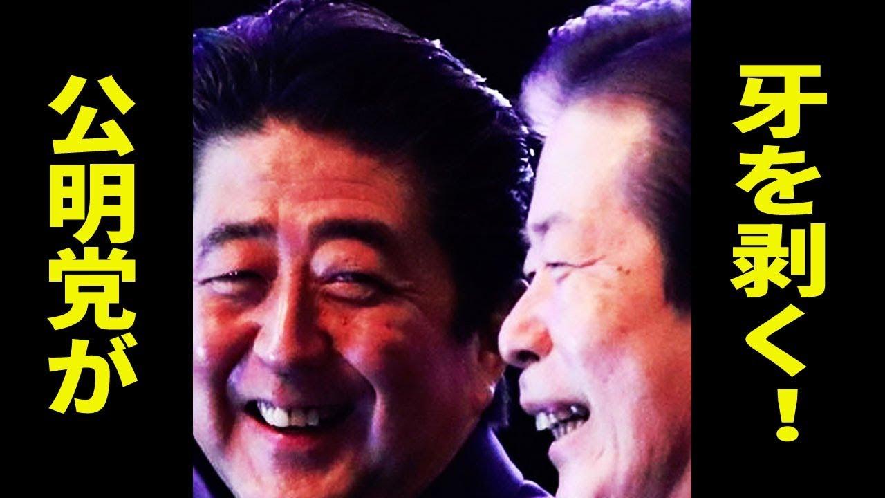 山口那津男が激怒! 参院選、公明党が遂に自民党に牙を剥く!
