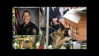 Evcil Hayvan ve Sahipleri Arasındaki 10 Yürek Burkan VEDALAŞMA #775