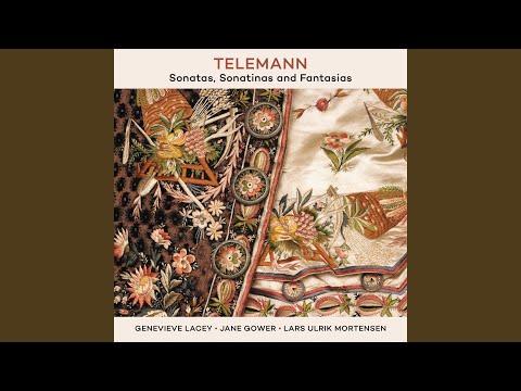 Telemann: Fantasia in E Major for Recorder, TWV 40:10 - 1. Affettuoso